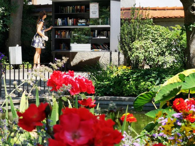 Der schöne Bücherschrank im noch schöneren Hofgarten