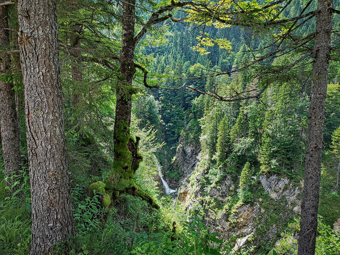 Der Wasserfall der Urschlauer Achen