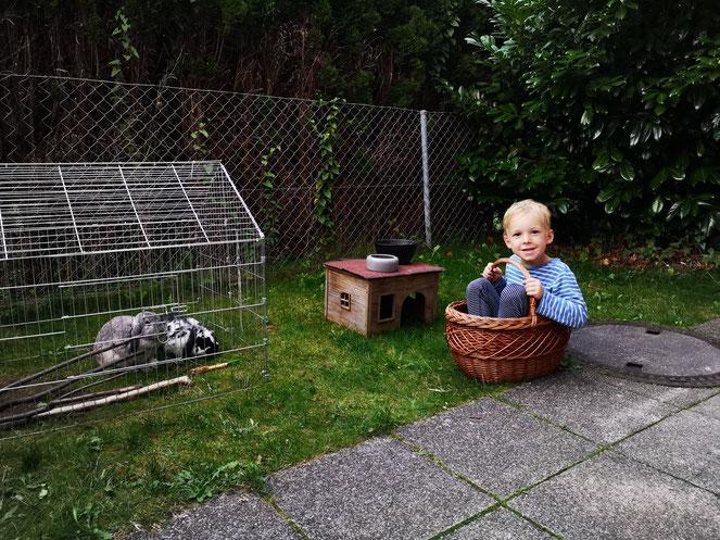 Mit dem Korb kann man nicht nur Hasen transportieren, sondern auch Kinder.