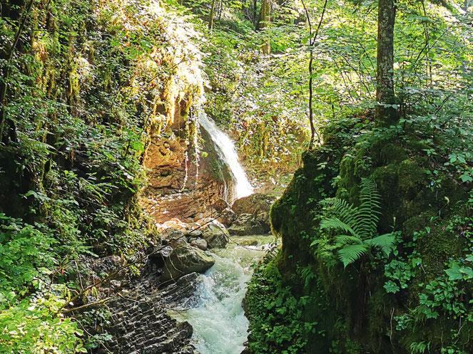 Ein Wasserfall schöner als der andere: Die Hammererbachklamm