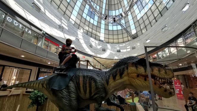 Auf einem T-Rex reitet man auch nicht jeden Tag.