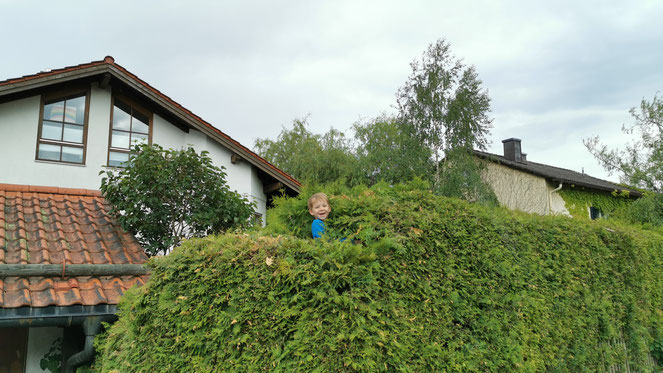 Ab durch die Hecke. Die Kinder haben ein neues Lager entdeckt.