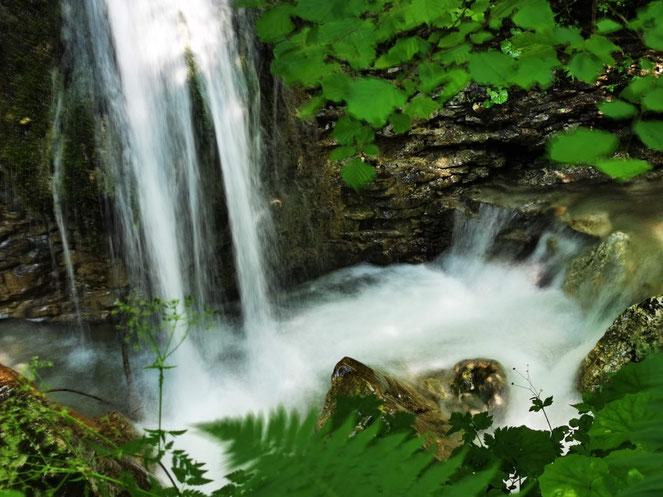 Auf dem Rückweg rätselten wir noch einmal, welcher der schönste Wasserfall war.