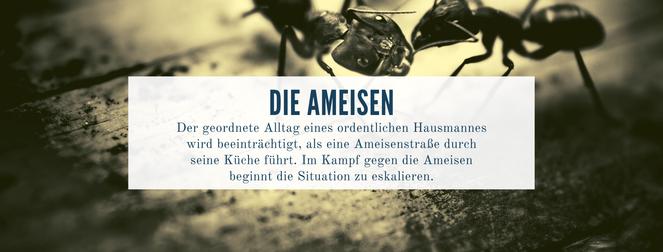 Kurzgeschichte Ameisen