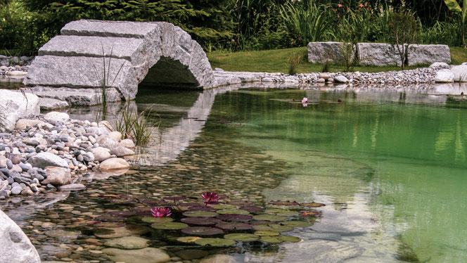 Wasser Dürig Gärten