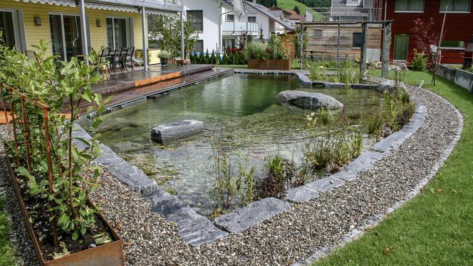 Schwimmteich Dürig Gärten