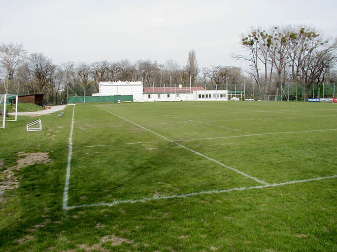 Fußballfeld 90x60 mit Betriebsgebäude und Büro sowie Garderoben und Duschen