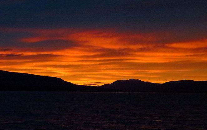 Am späten Abend sind wir zurück in Punta Arenas.