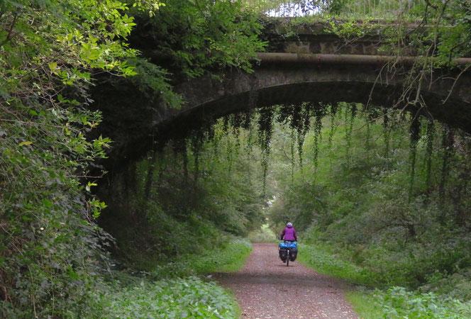 Märchenhafte Radwege.