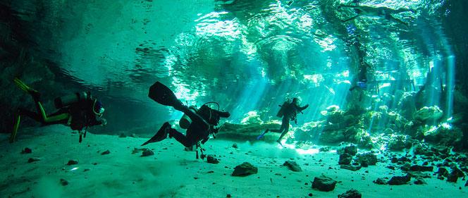 In vielen Cenotes kann man tauchen. (Bild aus dem Internet)