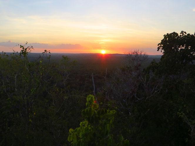 Es wird rasch Nacht über dem Urwald. Blick von der Pyramide El Tigre.