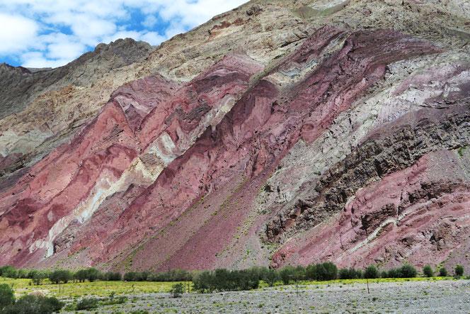 Einmal mehr sind die Formen und Farben der Natur atemberaubend schön!
