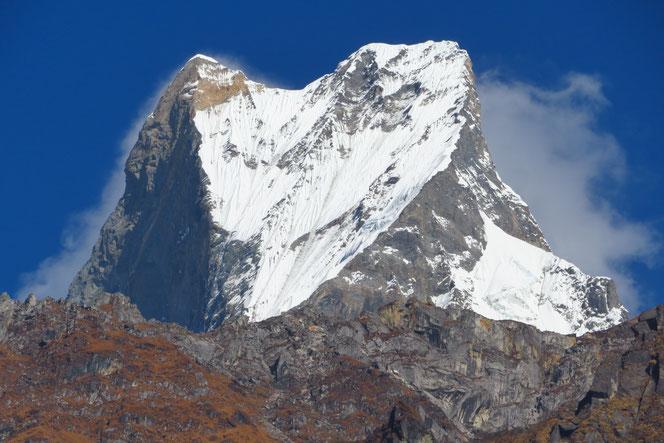 Machhapuchhre, 7000 m, heiliger Berg, der nicht bestiegen werden darf.