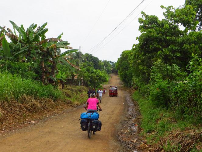 Wir haben Glück, die Strasse ist fast trocken (Hauptstrasse nach Rio Dulce).