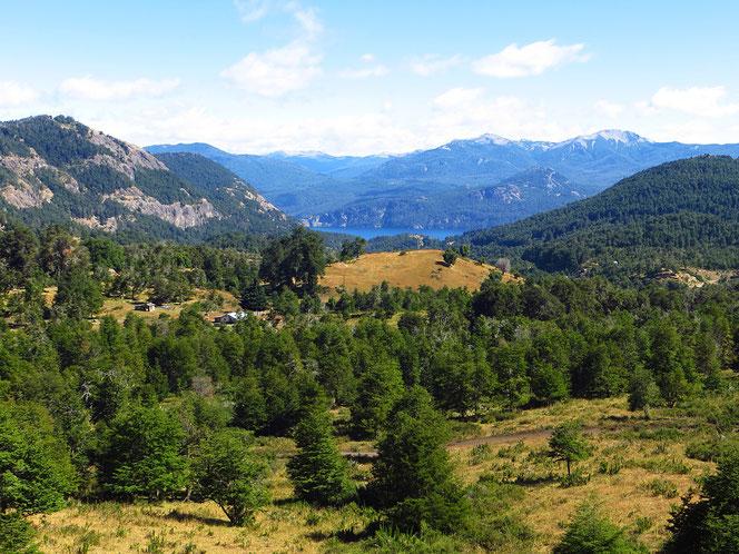 Ausblick auf den Lago Lacar.