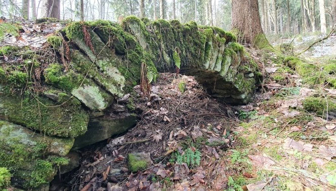 Wie ein Denkmal aus längst vergessener Zeit erinnert dieser Steinbogen an eins der Bornwaldhäuser. Er wirkt so standhaft wie die Bäume daneben. Foto: Andreas Bauer