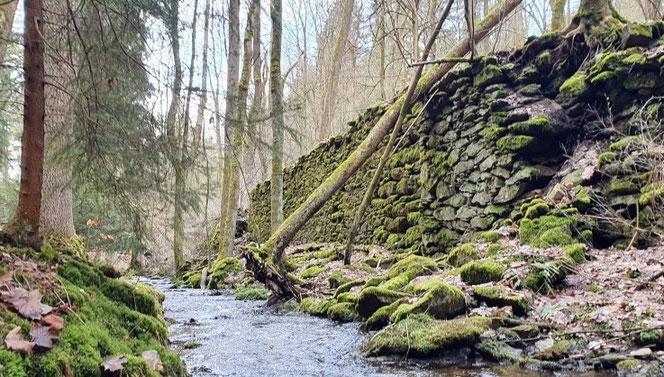 Auch an dieser Mauer entlang des Schwarzbachs hat der Zahn der Zeit kaum genagt. Das Wasser war wichtig für die vielen Mühlen im Bornwald. Foto: Andreas Bauer