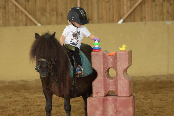 Cours de poney Baby's à proximité d'Auxerre