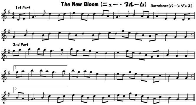 アイリッシュ音楽 フィドル バイオリン 練習曲