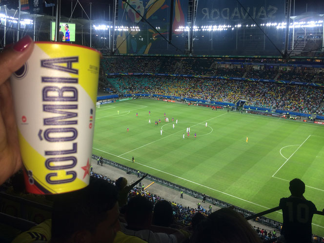 Si l'Arena Fonte Nova n'était pas tout à fait pleine avec 35 000 spectateurs environ, l'ambiance était quand même complètement au rendez-vous, contrairement à bien des matches du premier tour de cette Copa América brésilienne