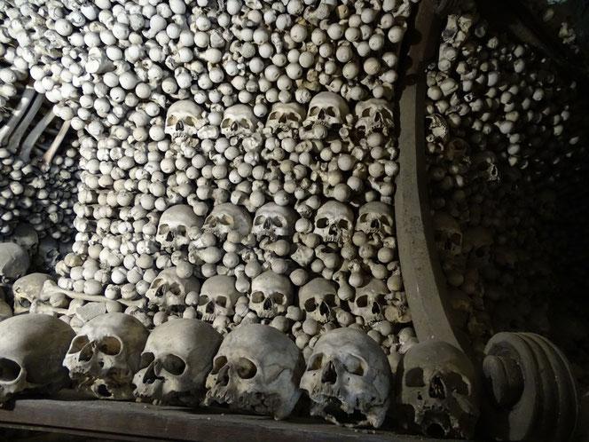 Bildergebnis für sedletz-ossarium eintritt