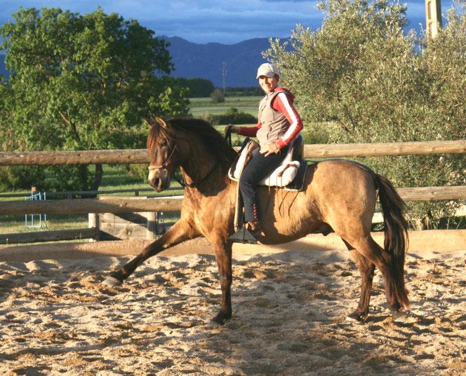 Susanne Lenk Horsemanship Doma Vaquera Doma Natural