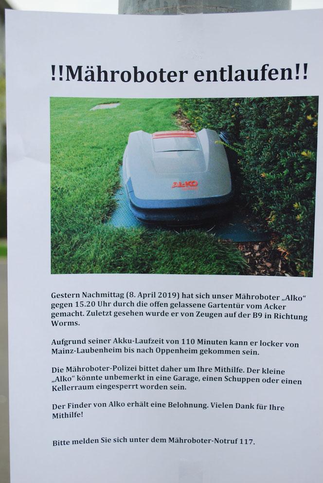 Achtung, süßer Mähroboter Alko entlaufen (Foto: Früherwisser Media)