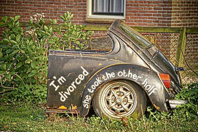 Traurige Angelegenheit: der Scheidungs-Käfer (Foto: Pixabay)