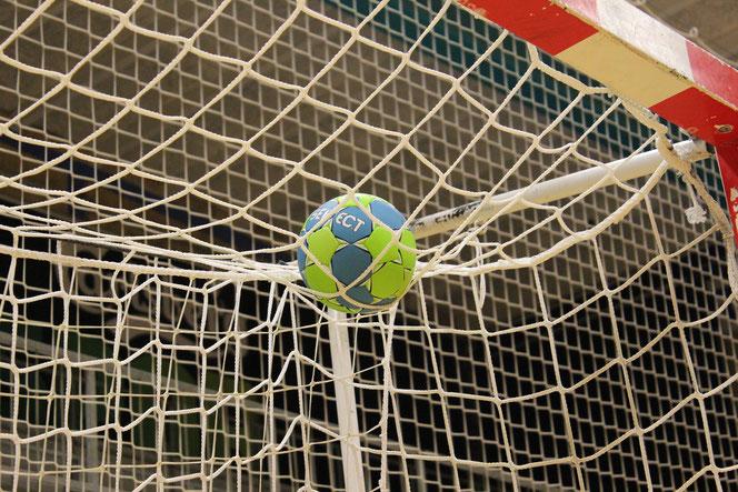 Rein das Ding! Handball-Fieber zur WM in Deutschland und Dänemark (Foto: Pixabay)