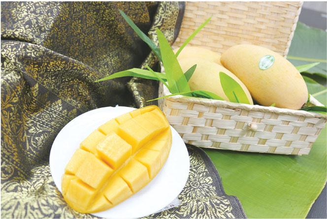 日本への贈り物にマンゴーをどうぞ
