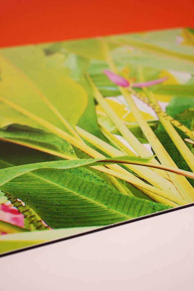 kunst druck bild wandbild sinsheim showroom möbel exklusiv fine art print kaufen kunst kaufen
