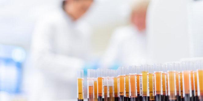 Rechte: Blutspendedienst West