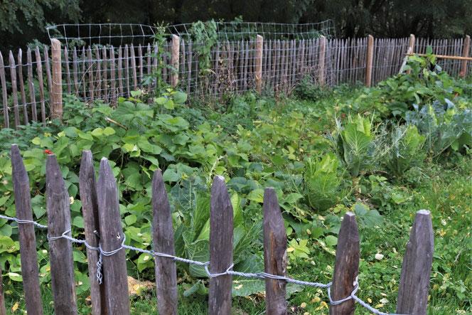 Garten vom Stiegl Gut Wildshut