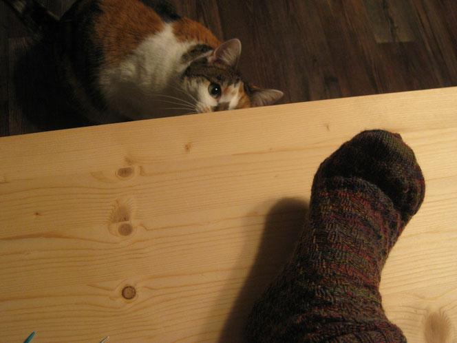 copyright www.birthe.eu Birthe Sülwald diagonale Socke fertige Socke