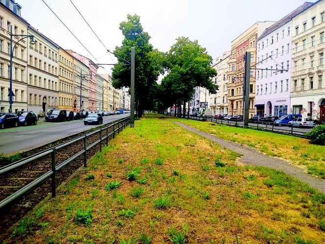 #Greifswalder Straße #PrenzlauerBerg