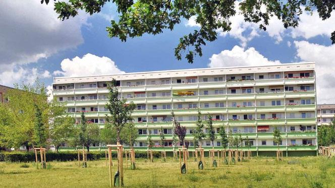 Foto: Wohnungsgenossenschaft Bernburg eG