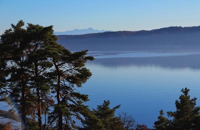 Sipplinger Berg mit Blick auf den Bodensee