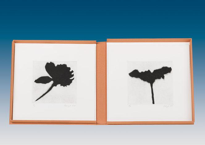 """Eliana Bürgin   Künstlerbuch """"Golden Hour"""" 2014. Fünf verschiedene abstahierte Blüten/Pflanzen schwarz eingefärbt in einer Buchklappschachtel in Decke. Mezzotinto, Blattgrösse 26,4 x 26,4 cm, Zerkall Bütten 250 g/m2"""