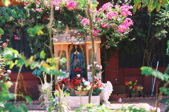 Here is an example of a better decorated shrine; la Virgen is surrounded by fresh flowers and angel statues.