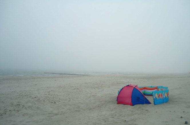 Strand Insel Hiddensee - Strandmuschel und Windschutz