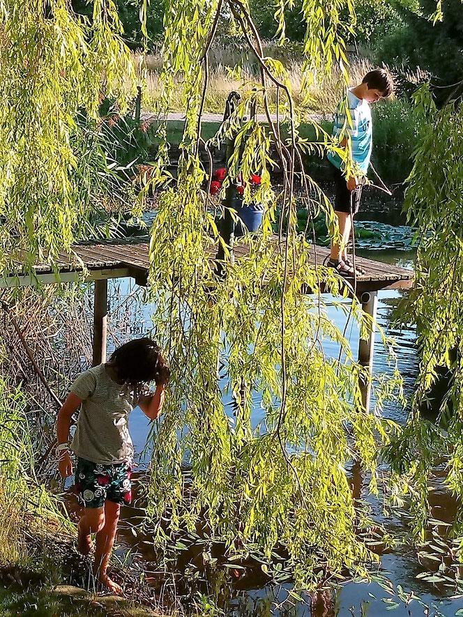 Feldberger Seenlandschaft, Neugarten, Feldberg, Mecklenburg-Vorpommern,  Urlaub mit Kindern, individuell reisen, Familienurlaub, Schwalbennest