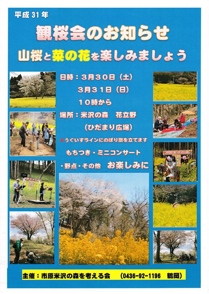 米沢の森を考える会 内田未来楽校 観桜会 菜の花 市原市