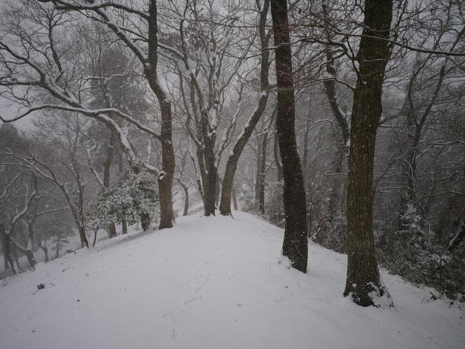 米沢の森 おじゅうはっちゃ 冬 雪