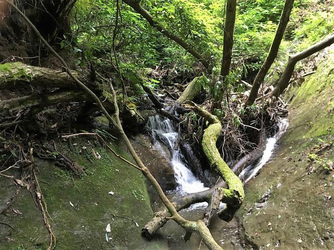 恩田川 間滝