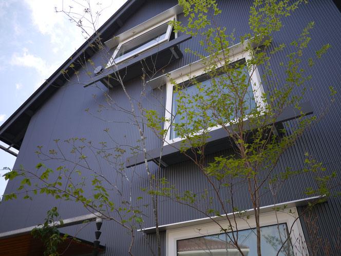 武田屋作庭店 庭づくり 八千代市 雑木の庭