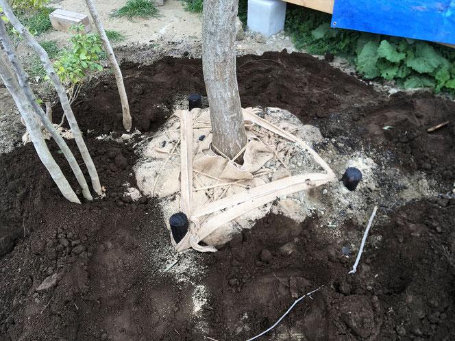 雑木 庭 支柱