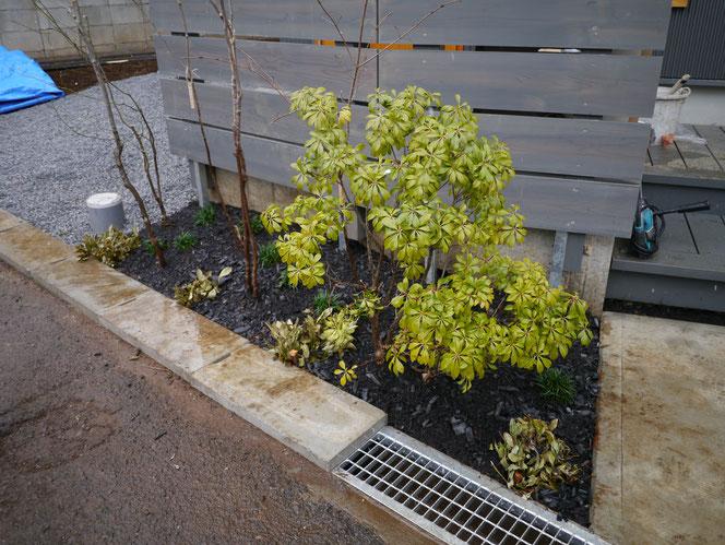雑木の庭 八千代市 千葉県