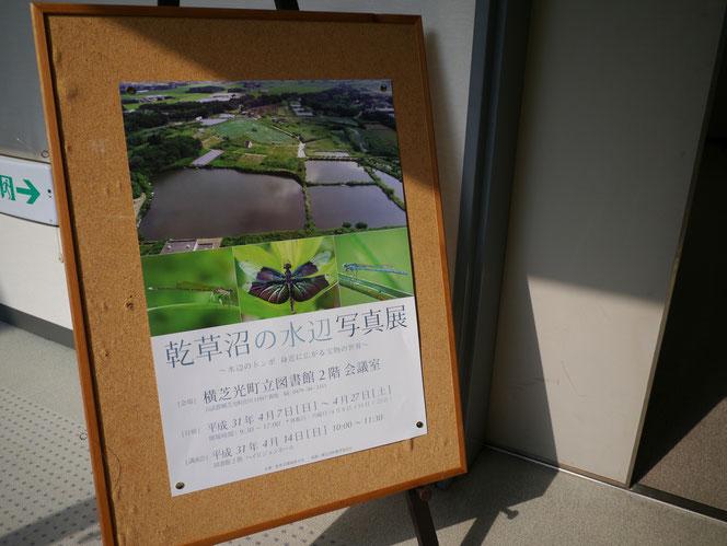 乾草沼 水辺の写真展 トンボ