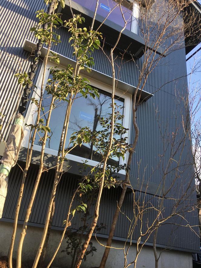 武田屋作庭店 造園 庭 植栽 植木