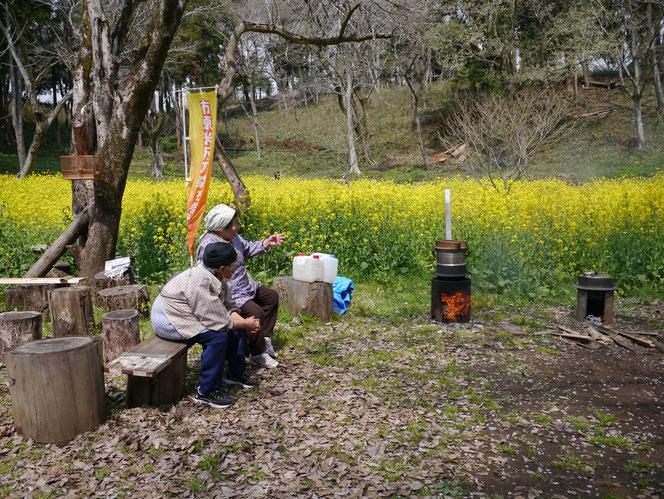 米沢の森 菜の花 桜